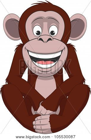 Funny little monkey