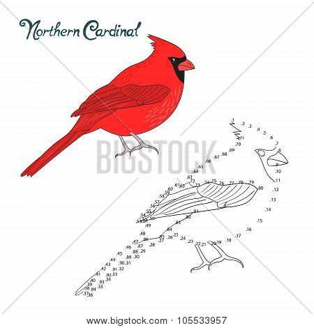 Educational game connect dots draw cardinal bird