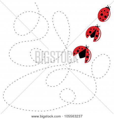 ladybird flat style. Vector illustration.