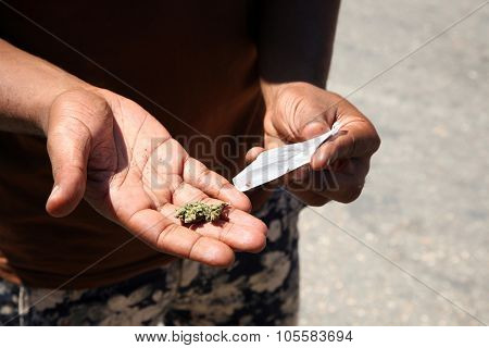 an unidentifiable person rolls a Marijuana Cigarette aka Joint, Blunt, or Number. Marijuana is quickly becoming legal in the united states as is increasing used as a medicinal herb.
