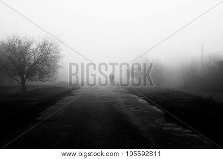 Wayfarer In Fog