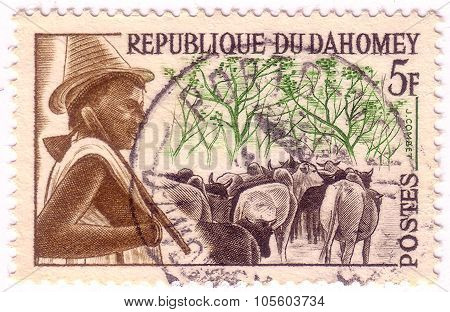 Dahomey - Circa 1963: A Stamp Printed In Dahomey (now Republic Of Benin), Shows Peuhl Herdsman And C
