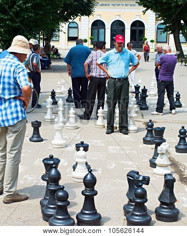 Big Chess Game