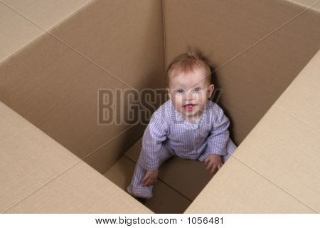 Baby In Box Ready To Be Shipped