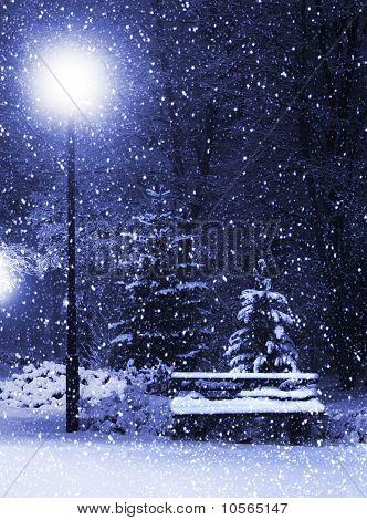 Bench, Christmastree And Lantern