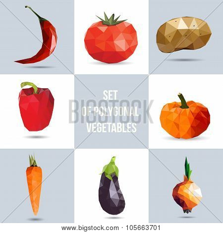 Set of polygonal vegetables