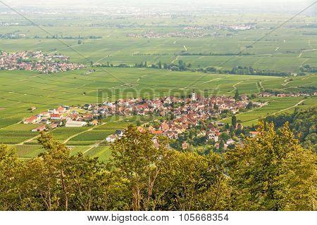 Region Suedliche Weinstrasse (southern wine route) - village named Weyher in der Pfalz - aerial view from Rietburg ruin poster
