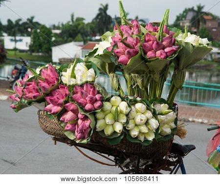 Flowers on a bicycle of street vendor on the street in Hanoi, Vietnam.