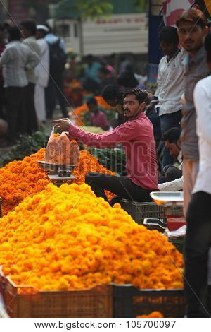 Pune, India - October 21, 2015: Weighing Marigold