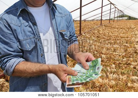 Farmer Hold Money With Tobacco In Background