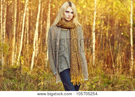 Portrait of young beautiful woman in autumn pullover. Fashion photo. Blonde girl. Perfect make-up poster