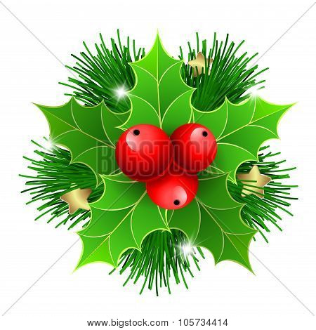 Christmas Holly With Berries And Fir Tree Branches