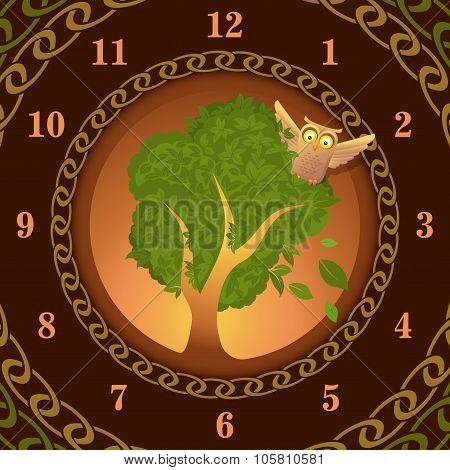 Watch of owl on oak