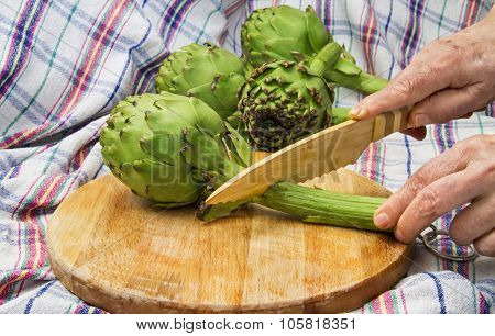 Globe Artichoke Being Cutted