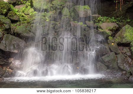 Emerald pool, Dominica in the Caribbean deep in the rainforest poster