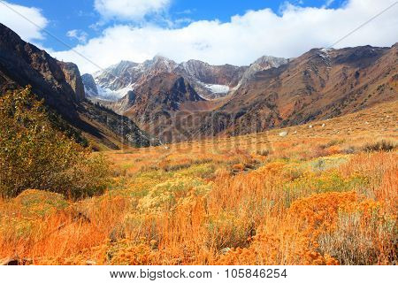Mount Aggie at McGee creek in eastern Sierra mountains