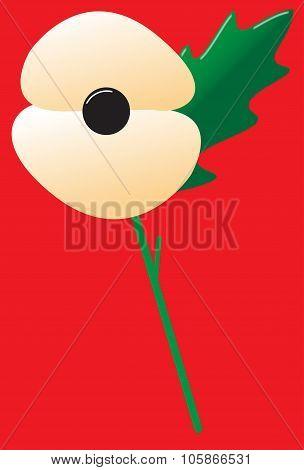 Poppy White With Leaf