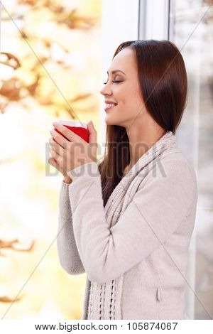 Beautiful young lady at the window holding a mug.