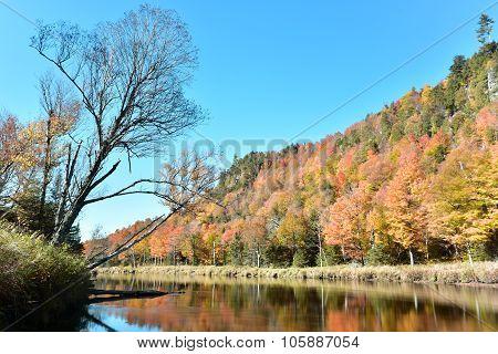 Adirondacks Fall Foliage, New York