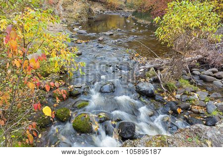 Autumn Stream At Bear Creek Okanagan Valley Bc