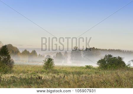 Foggy Meadow At Sunrise On Podlasie, Poland