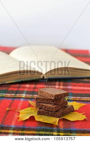 delicious milk dark chocolate on maple leaf shallow depth of field