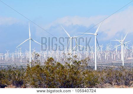 Wind Turbines in the Desert