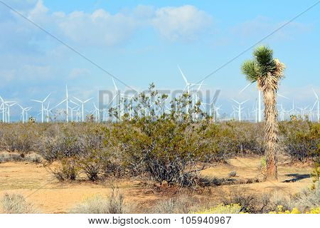 Wind turbines in Mojave Desert