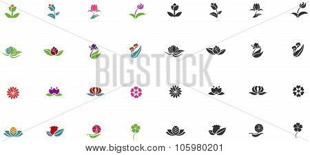 Silhouette And Color Fantasy Logo Shape Flower Such As Lotus Rose Tulip Sunflower Daisy Clover Leaf
