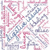 Digestive Issues word cloud on a white background. poster