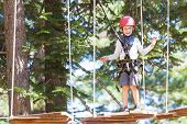 positive little boy climbing at outdoor treetop adventure park being active and healthy poster