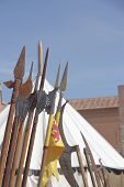 foreground of some spears of the medieval period poster