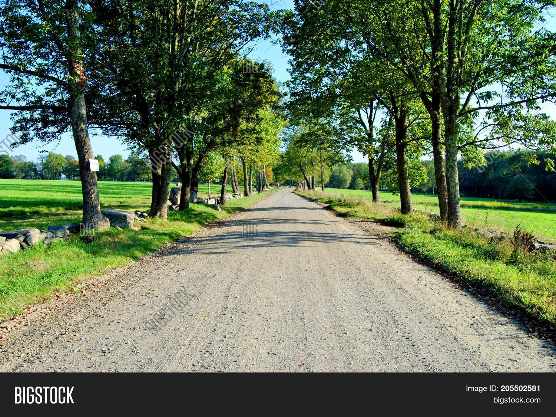 Empty Lone Dirt Road Image & Photo (Free Trial) | Bigstock