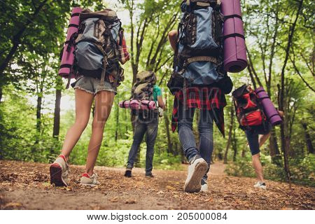 Low Angle Rear Shot Of Two Couples Hiking Together, Wearing Comfortable Outfits, Sneakers, Have Back