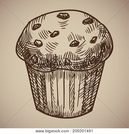 Engraving of muffins. Delicious chocolate pastry sketch. Engraving menu for the restaurant. Vector illustration. EPS 10.