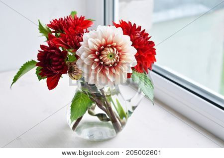 Autumn red dahlias bouquet in a vase on a white window sill