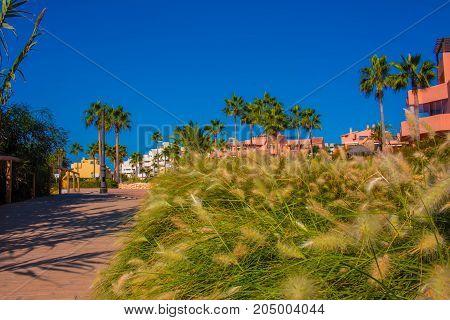 Estepona city. Morning idyllic landscape. Costa del Sol, Andalusia, Spain.
