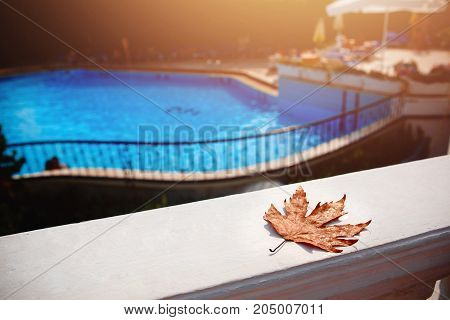 Fall leaves floating on background swimming pool blue water. Concept pool cleaning