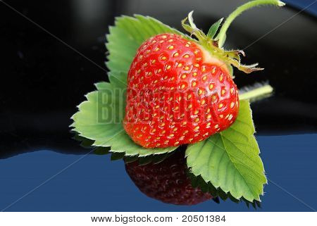 Strawberry Leaf On Black With A Green Background