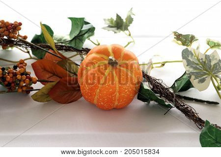 Artificial berries and pumpkin on a white tablecloth in an autumn outdoor setting.
