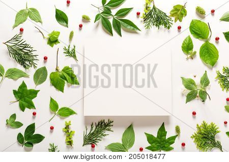 Collection of green leaves top view flat lay
