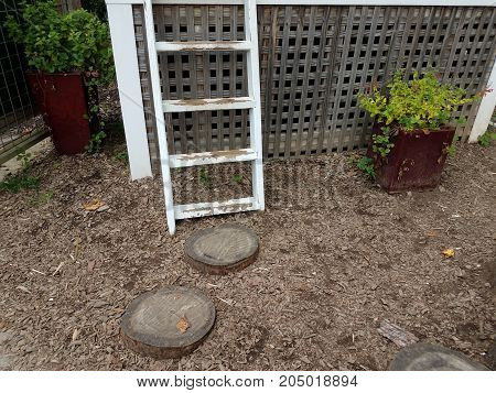wood stumps and a white ladder and mulch