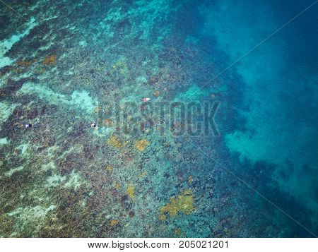 People doing snorkel above aerial view in blue water with corals