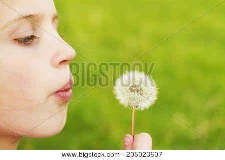 a little girl holding a dandelion outside.