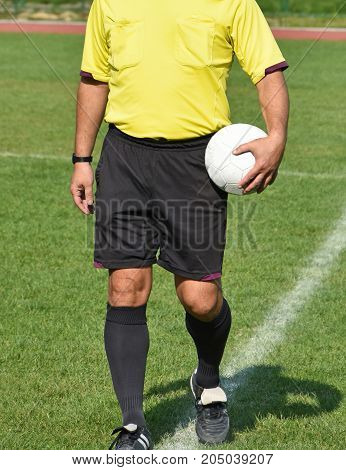 Soccer Referees Before Match