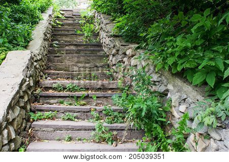 The image old stone stairs in the Park overgrown with bushes and grass.