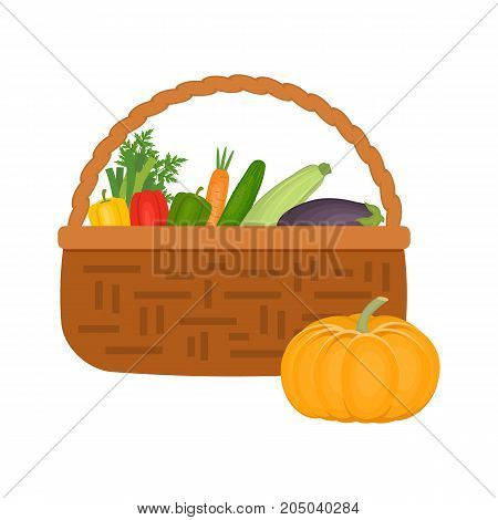Wicker basket full of vegetables isolated on a white background. There are pumpkin, carrot, cucumber, sweet peppers, eggplant, zucchini and other vegetables in the picture. Vector illustration.