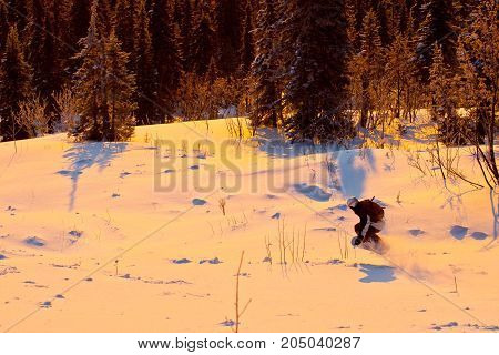 The snowboarder rideing in the forest of Siberia