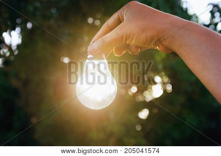 Idea hand holding light bulb concept solar of energy in nature