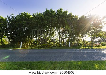 Empty Asphalt Country Road Passing Through Green Agricultural Fields. Countryside Landscape On A Sun